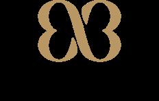 Schalins logo